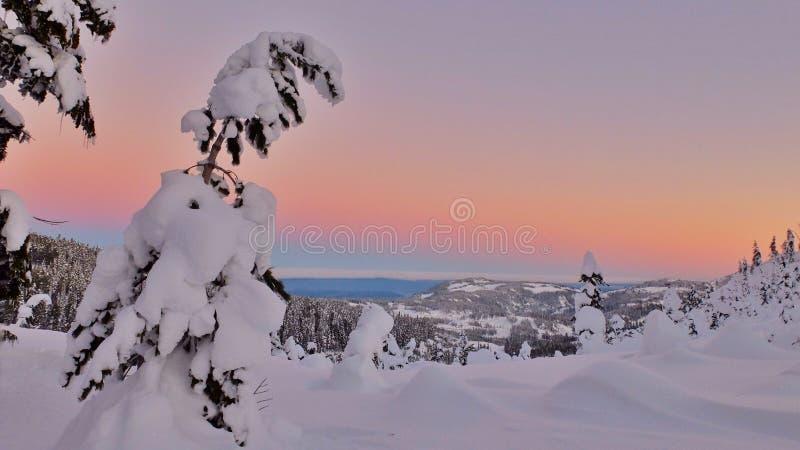 Coucher du soleil au pays des merveilles d'hiver photo libre de droits