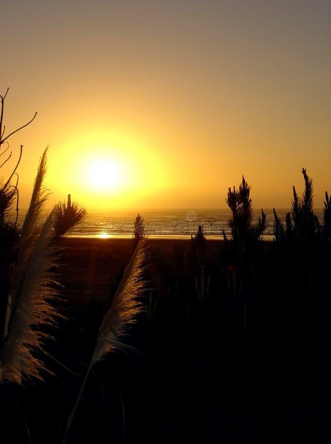 Coucher du soleil au Raglan, Nouvelle Zélande photos stock