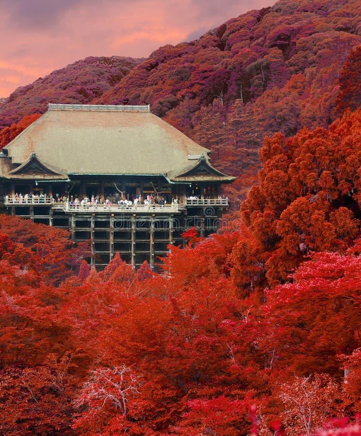 Coucher du soleil Autumn Red Leaves de temple de Kiyomizu-dera V photos stock