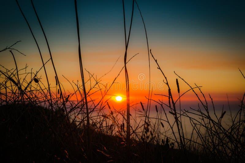 Coucher du soleil avec l'herbe grande photos libres de droits