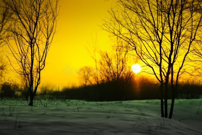 Coucher du soleil avec la neige image libre de droits