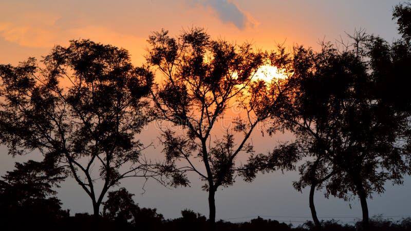 Coucher du soleil Betai Nadia West Bengal image libre de droits