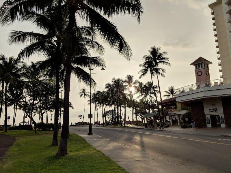 Coucher du soleil bien qu'arbres de noix de coco sur la rue de Kapahulu avec Tucker et boisson, et Starbucks sur le plancher infé images stock