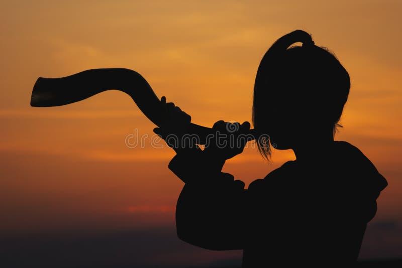 Coucher du soleil celtique de klaxon photo stock