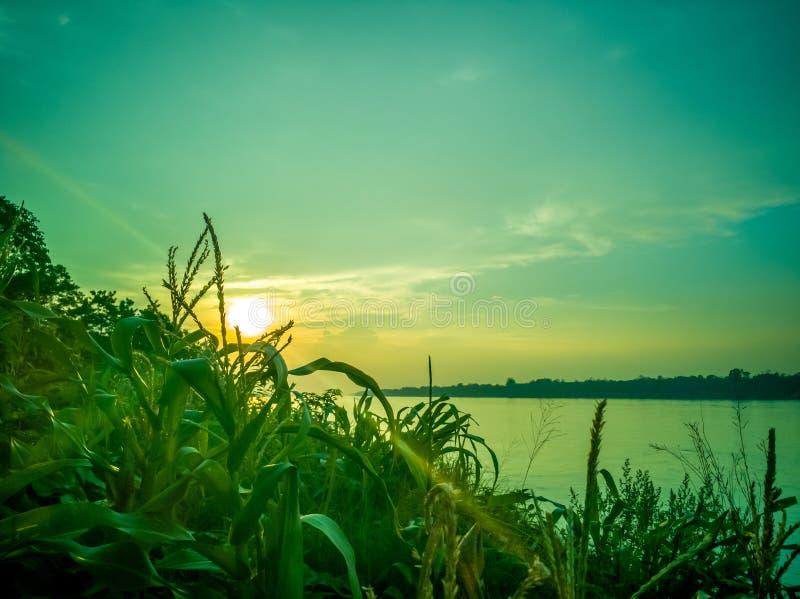 Coucher du soleil chez le Mekong, Tha?lande image stock