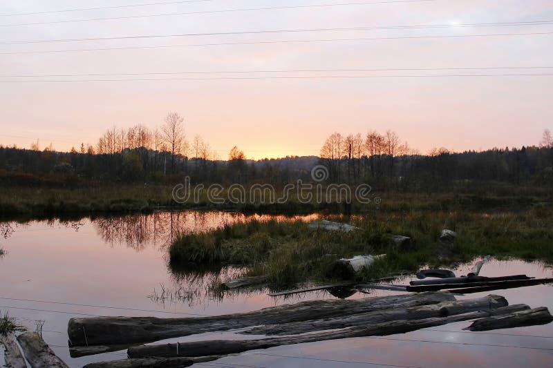 Coucher du soleil coloré au-dessus du lac dans les bois photos stock