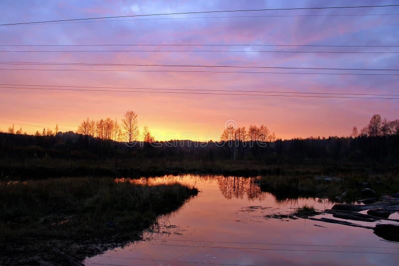 Coucher du soleil coloré au-dessus du lac dans les bois photos libres de droits