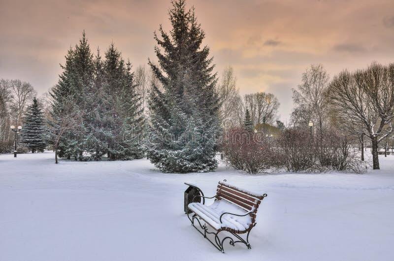 Coucher du soleil coloré au-dessus du parc d'hiver couvert par neige - paysage pittoresque d'hiver images libres de droits