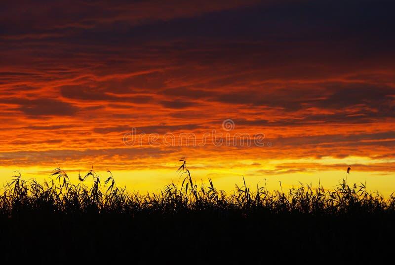 Coucher du soleil cramoisi rouge image stock