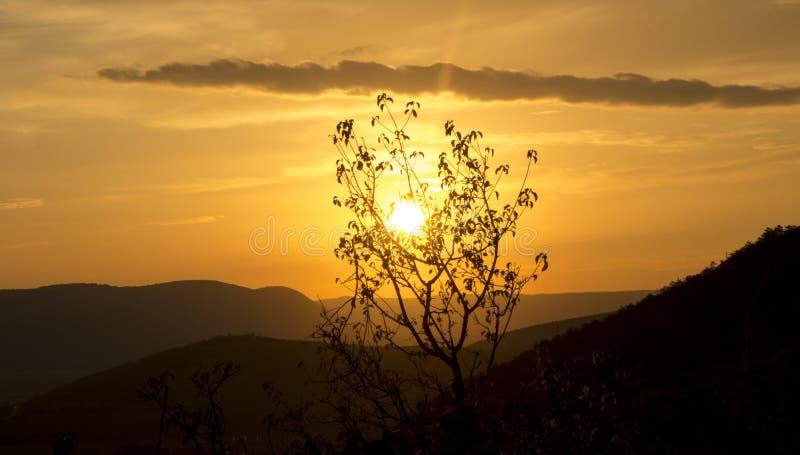Coucher du soleil d'or image stock