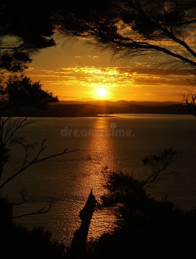 Coucher du soleil d'or. photo stock