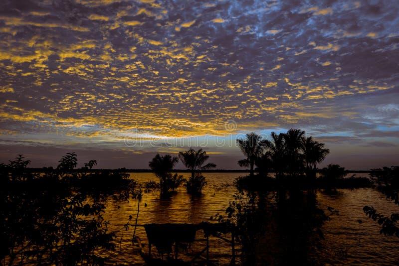 Coucher du soleil d'Amazone dans le lac Amanã images libres de droits