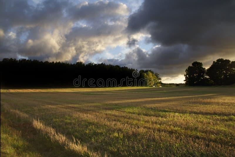 Coucher du soleil d'automne photo libre de droits