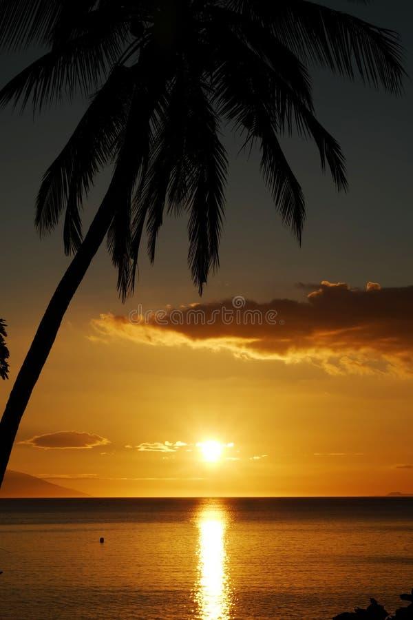 Coucher du soleil d'or dans le paysage d'Anilao Philippine images libres de droits