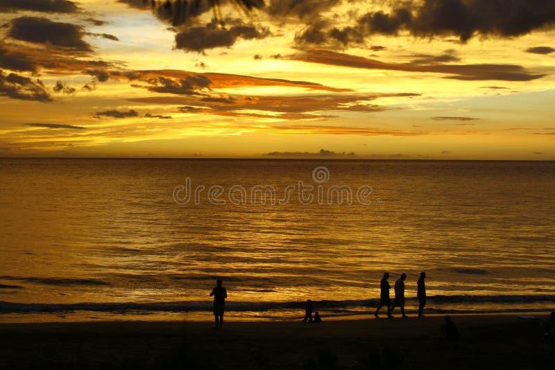 Coucher du soleil d'or de Tropica   photos libres de droits
