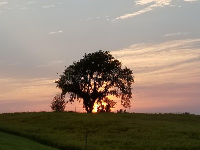 Coucher du soleil d'entraînement de pays photographie stock libre de droits