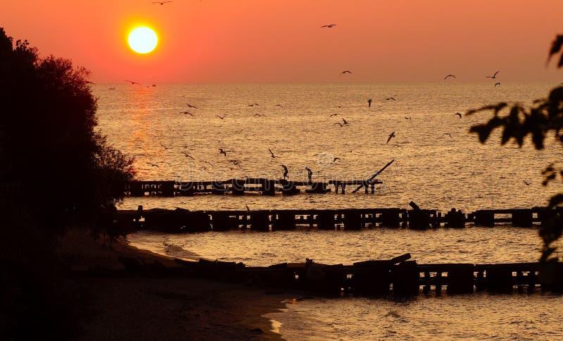 Coucher du soleil d'Erie de lac images libres de droits