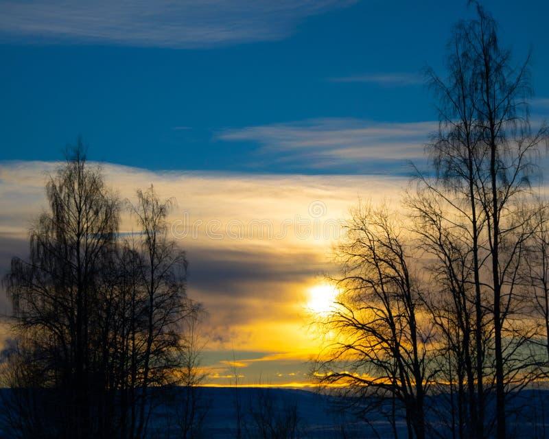Coucher du soleil d'hiver dans le nord photographie stock