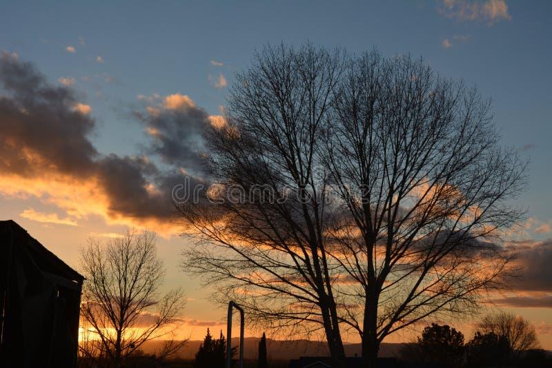 Coucher du soleil d'hiver de Paso Robles avec la silhouette des arbres et de la grange photographie stock libre de droits