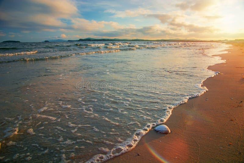 Coucher du soleil d'or lumineux sur la plage, les vagues sur le sable, coquilles photos stock