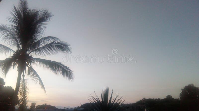 Coucher du soleil dans des cairns avec la paume image libre de droits