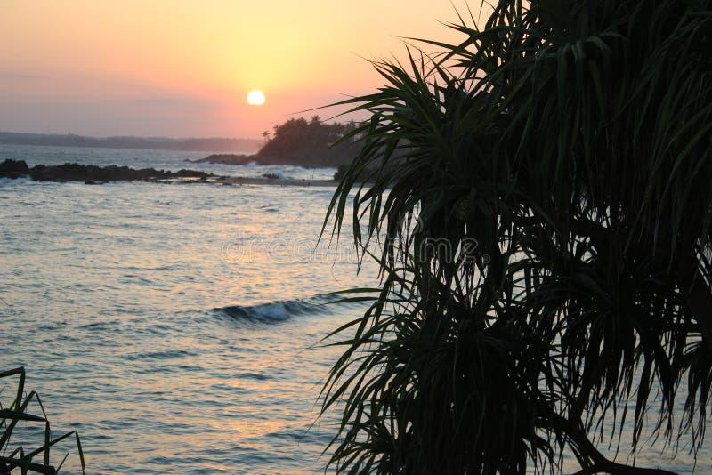Coucher du soleil dans l'océan photo libre de droits