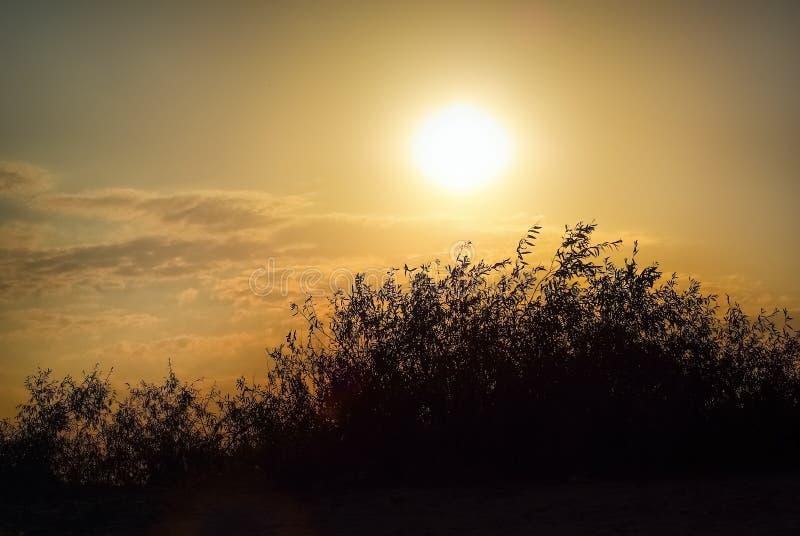 Coucher du soleil dans la campagne photographie stock