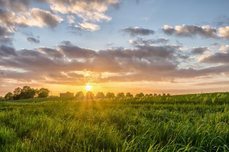 Coucher du soleil dans la campagne photo stock