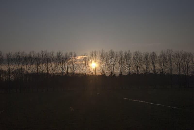 coucher du soleil dans la campagne avec le soleil par les arbres dans le silhouet image stock