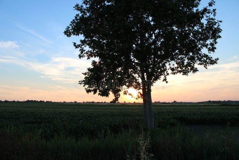 Coucher du soleil dans la campagne d'Emilia Romagna photographie stock