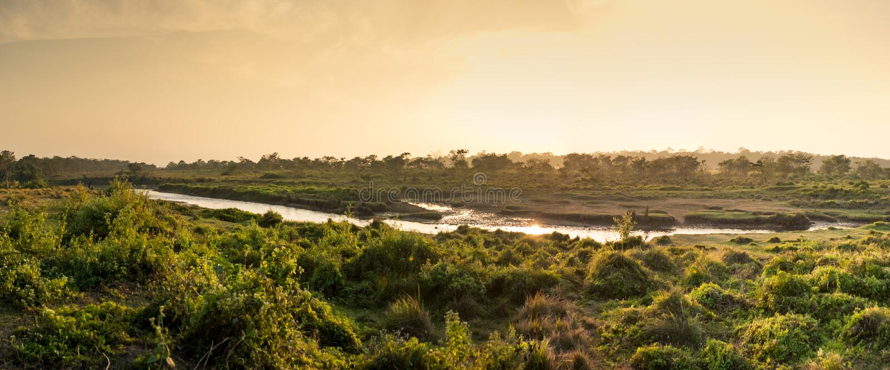Coucher du soleil dans la jungle, parc national de Chitwan, Népal image stock