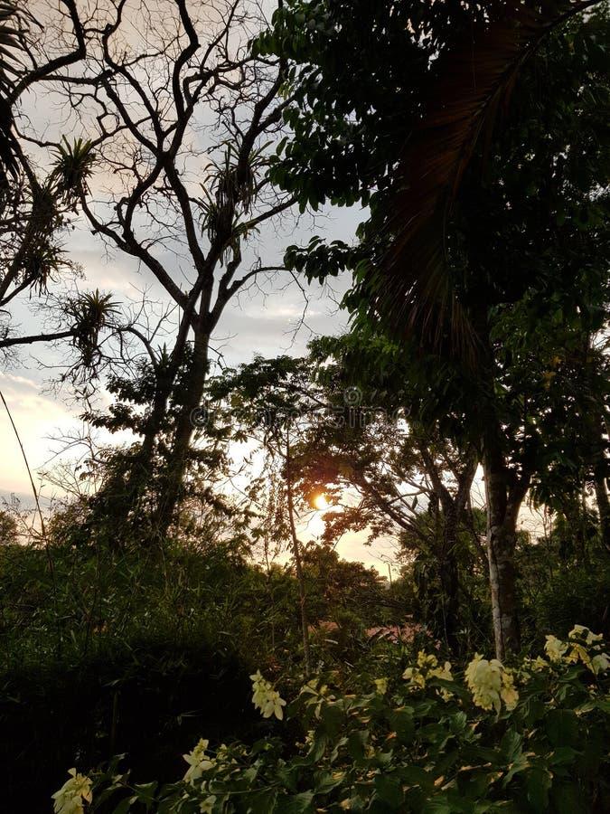 Coucher du soleil dans la montagne photos stock