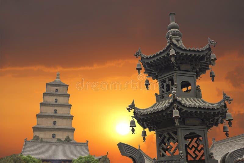 Coucher du soleil dans la pagoda sauvage géante d'oie photographie stock libre de droits