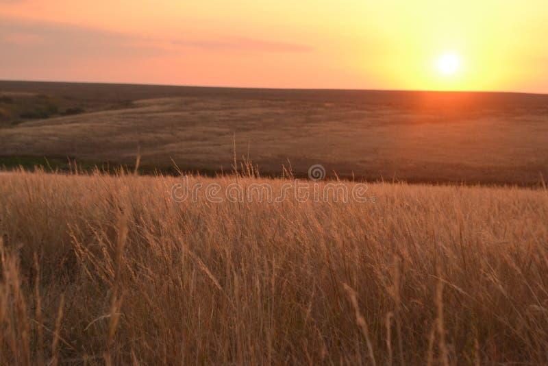 Coucher du soleil dans la steppe photos stock