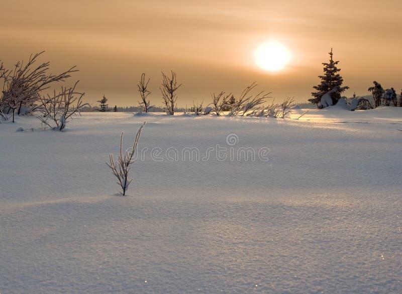 Coucher du soleil dans la toundra image stock