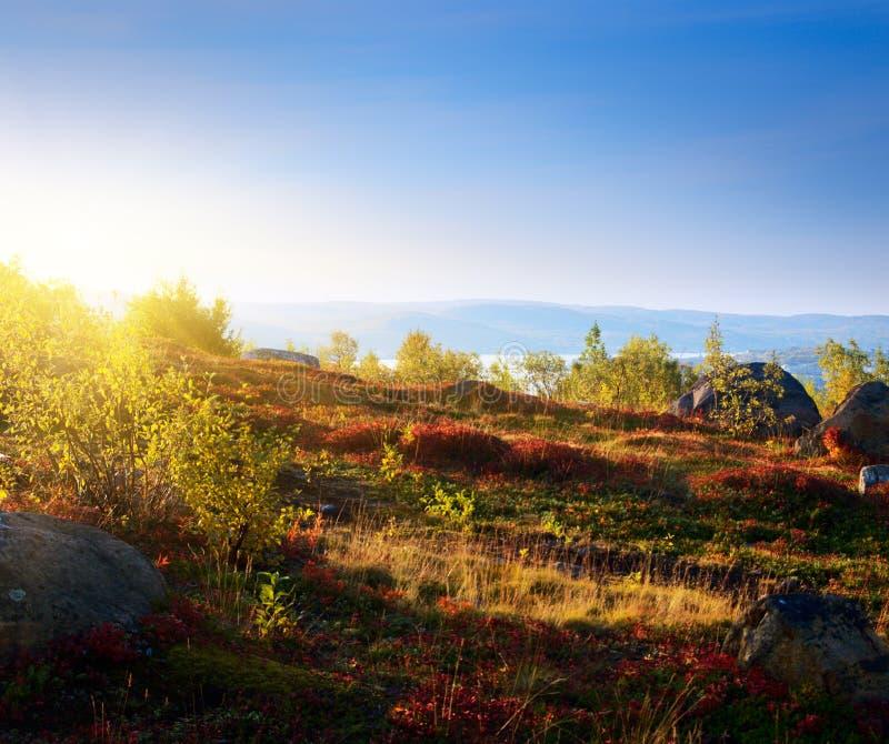 Coucher du soleil dans la toundra de montagne photos stock