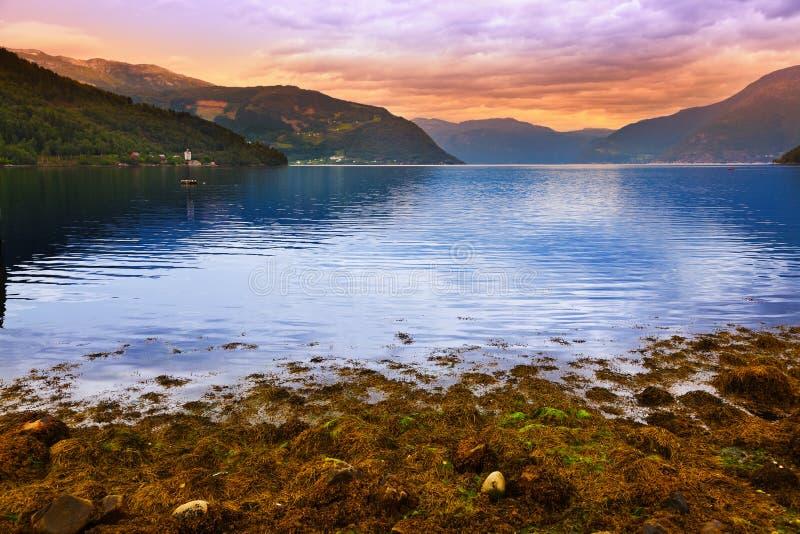 Coucher du soleil dans le fjord Hardanger Norvège photos libres de droits