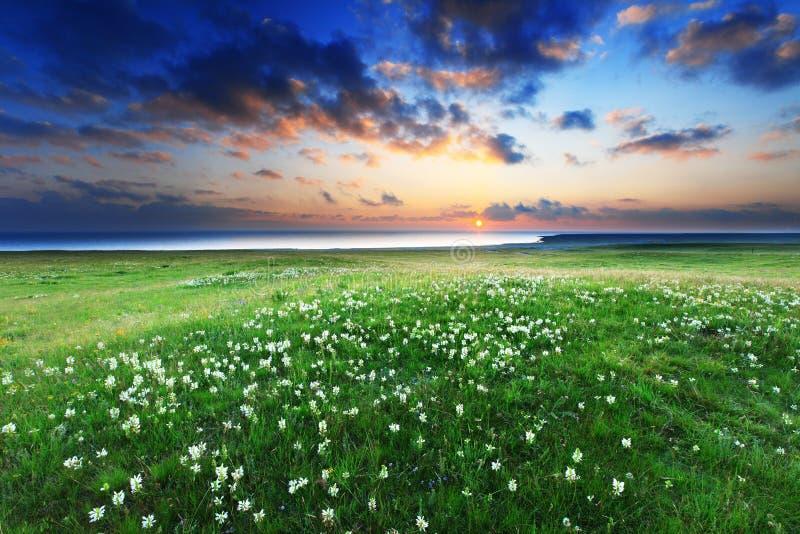 Coucher du soleil dans le lac Qinghai photos libres de droits