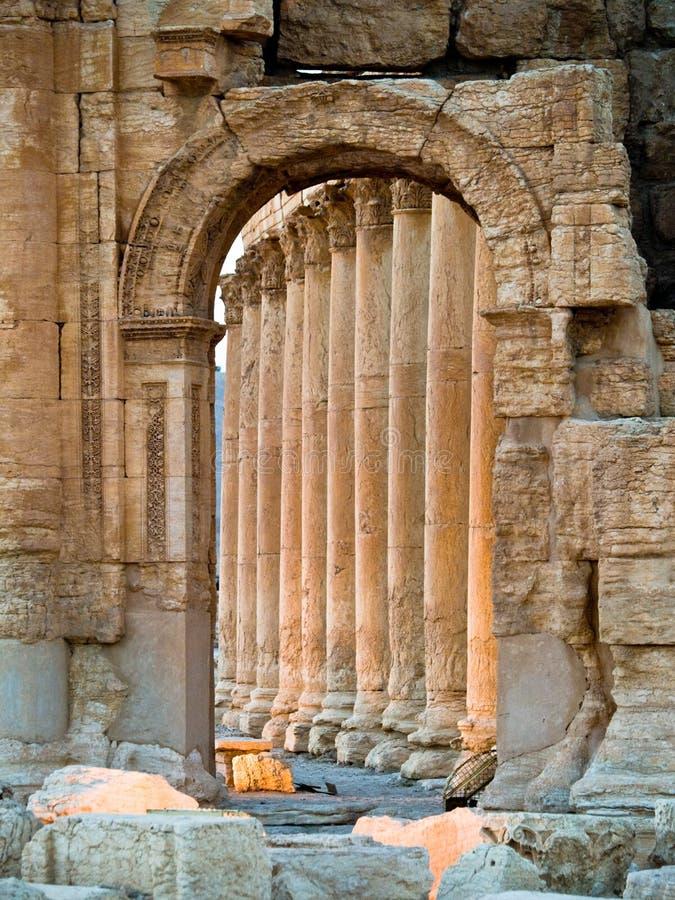 Coucher du soleil dans le Palmyra photos libres de droits