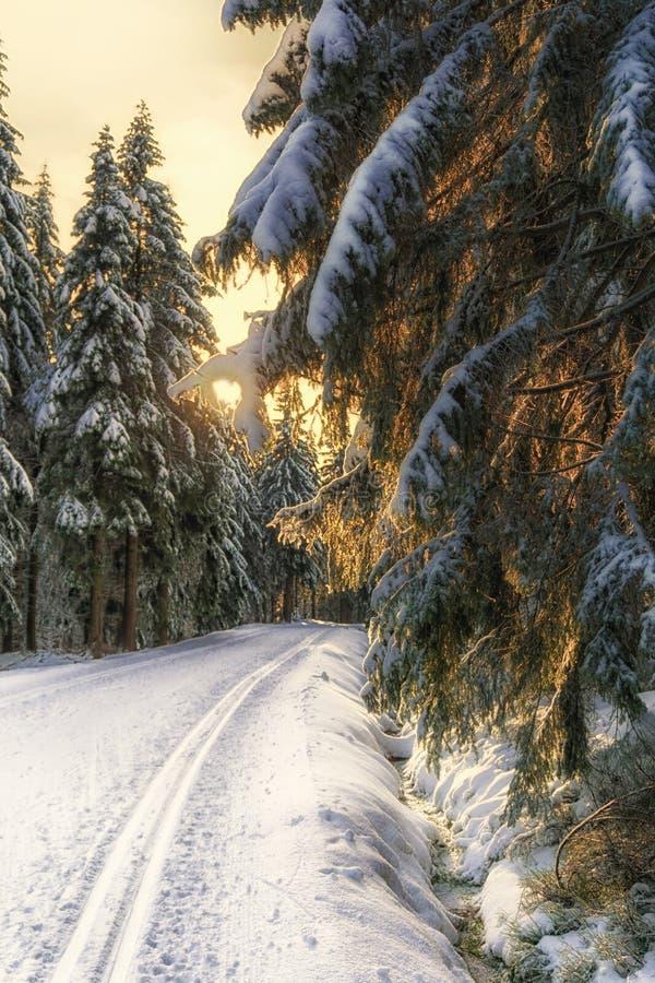 Coucher du soleil dans les montagnes en hiver image libre de droits