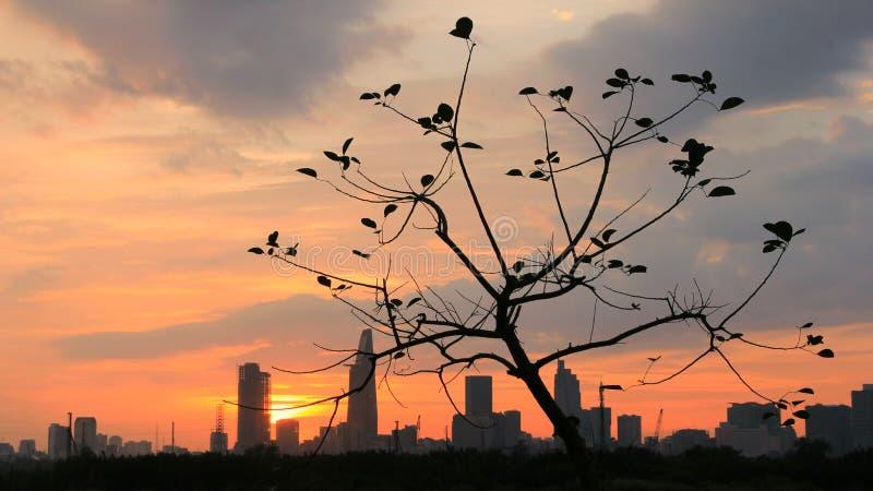 Coucher du soleil dans Saigon photo libre de droits