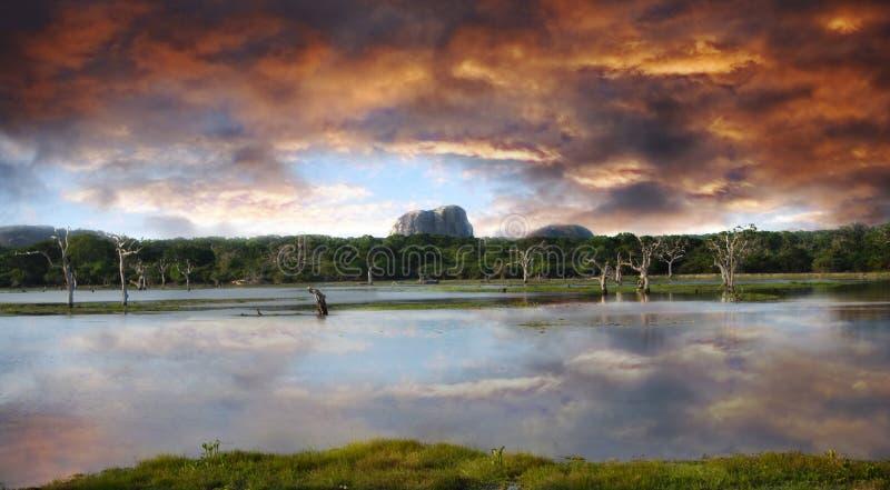 Coucher du soleil dans Yala images stock