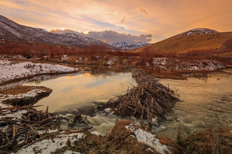 Coucher du soleil de barrage de castor de Deer Creek image stock