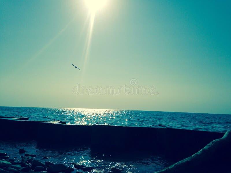 Coucher du soleil de bord du lac photographie stock
