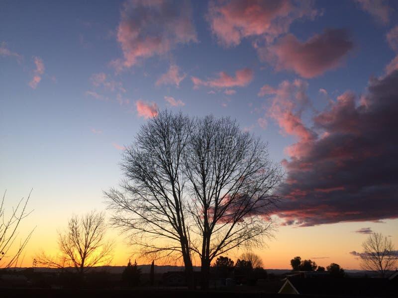 Coucher du soleil de chute de Paso Robles avec de grands nuages de tempête de dépassement d'arbres photographie stock libre de droits