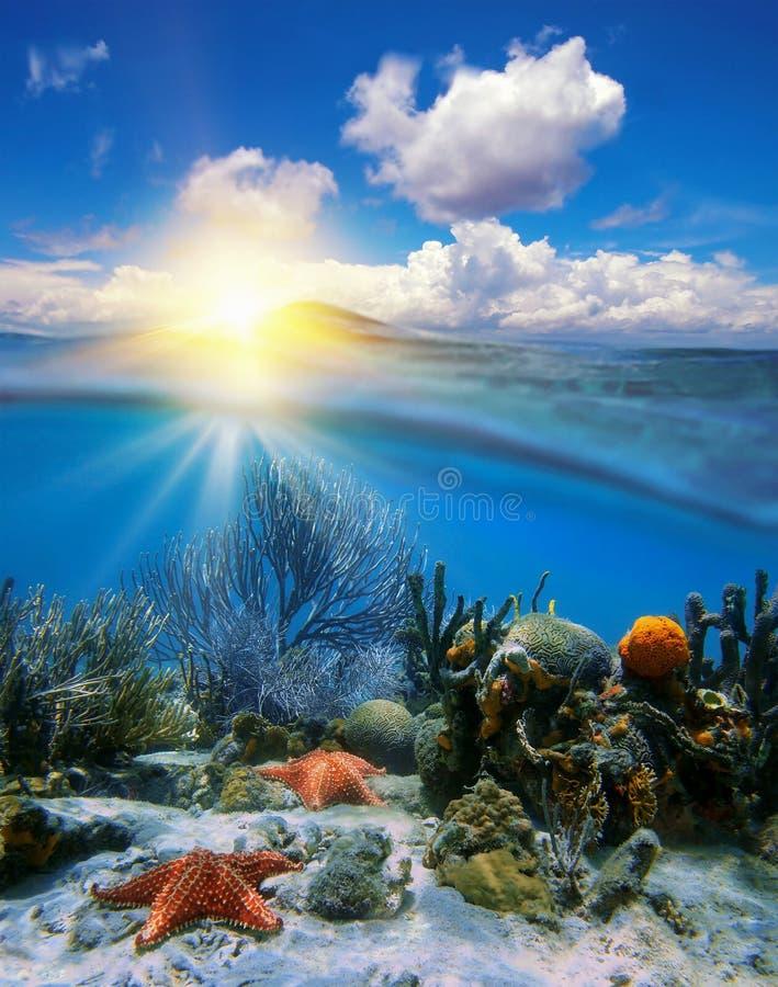 Coucher du soleil de ciel et coraux sous-marins avec des étoiles de mer images stock