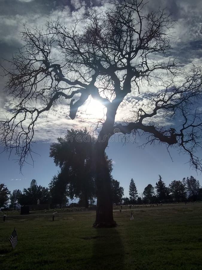 Coucher du soleil de Cymetary photos stock