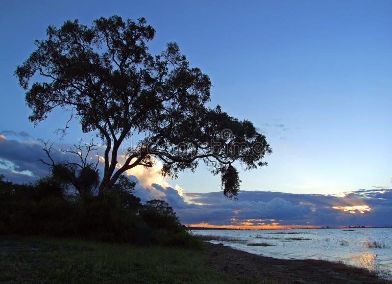 Coucher du soleil de fleuve de Chobe images stock