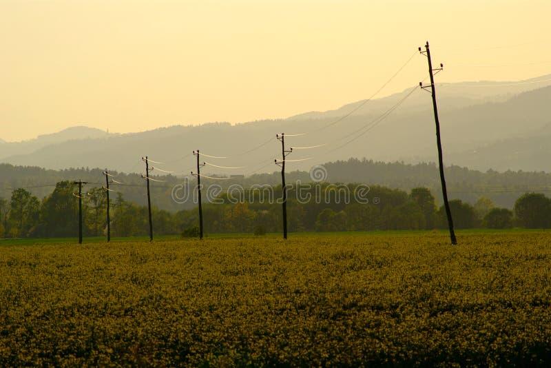 Coucher du soleil de gisement de Canola photographie stock