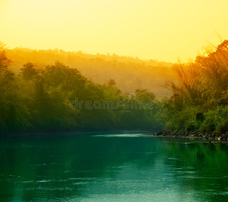 coucher du soleil de jungle image stock